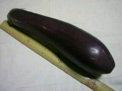 『ていざなす』伝統野菜