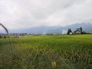 『昭和のかおりのポーチ』と今日の安曇野周辺